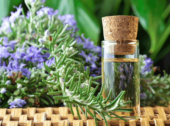 Combining Aromatherapy with Acupuncture: It Makes Science and Scents