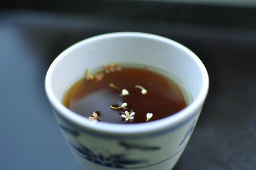 Black Tea Aids Oral Health