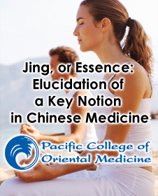 Jing, or Essence: A Brief Attempt at Elucidation of a Key Notion in Chinese Medicine