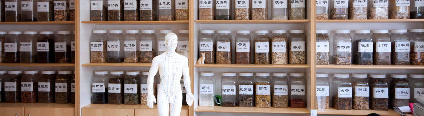 Master's Programs in NY - Chinese Medicine - Pacific College