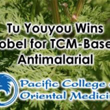 Tu Youyou Wins Nobel Prize in Medicine for TCM-Based Malaria Treatment