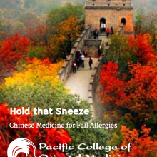 Hold that Sneeze: Chinese Medicine for Fall Allergies