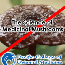 The Science of Medicinal Mushrooms