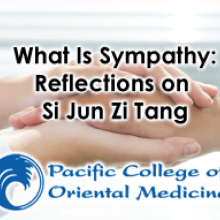 WHAT IS SYMPATHY: Reflections on Si Jun Zi Tang