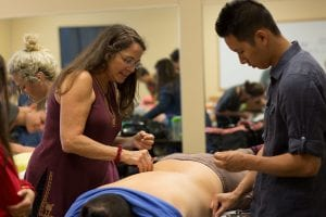 student career in acupuncture