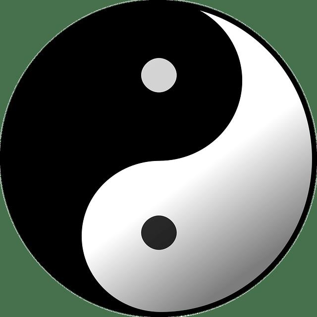 A Yin-Yang Symbol.