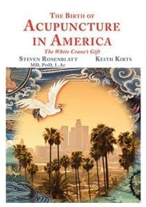 The Birth of Acupuncture in American Cover
