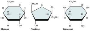 Fructose, Glucose, Galactose Molecules