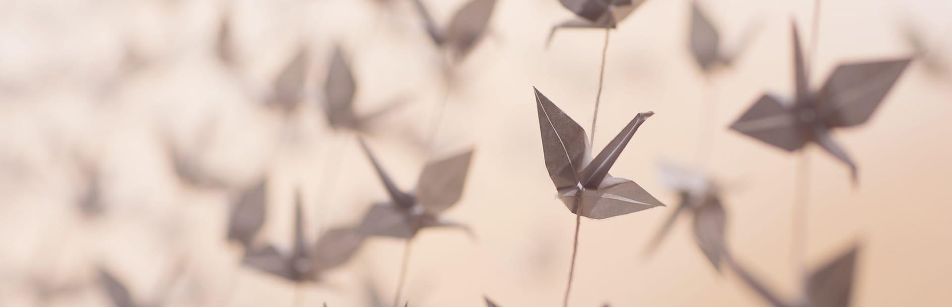 Cran origami