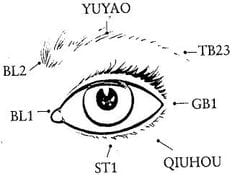 Acupuncture for Vision Loss